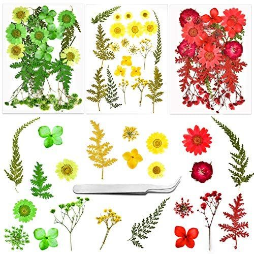 63 PCS Pressed Flowers for Resin, Dried Flowers for Crafts Real Pressed Flowers Natural Dried Colorful Mixed Petals Herbs for DIY Resin Craft Jewelry Necklace Candle Pendant with Tweezers